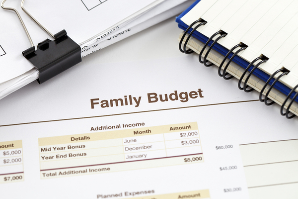 Family Budget Spreadsheet Template from d295c5dn8dhwru.cloudfront.net